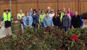 2016 Pruning